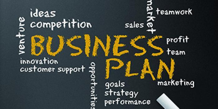 Il business plan: gli aspetti economici e finanziari big