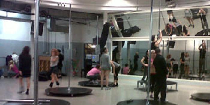 Pole dance, una nuova disciplina fitness per le palestre big