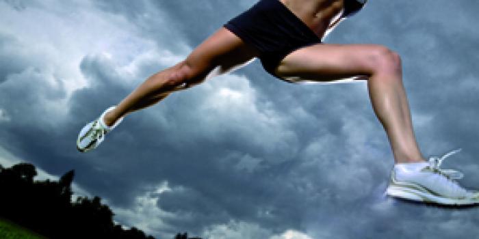 Kylates, Piloga, Rebounding: le novità in palestra big