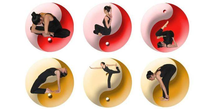 Esercizi Zen-Stretching®